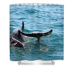 Shower Curtain featuring the photograph Play Time by Debra Forand