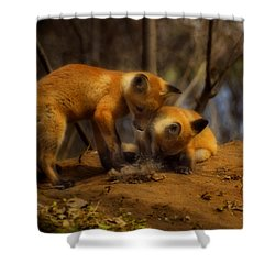 Play Time Shower Curtain by Thomas Young