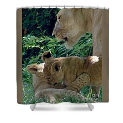Playful Cubs Shower Curtain