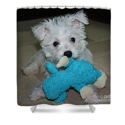 Playful Puppy Shower Curtain by Terri Waters