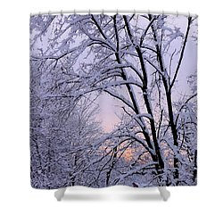 Playhouse Through Snow Shower Curtain