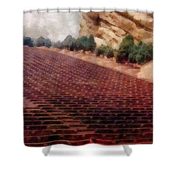 Playing At Red Rocks Shower Curtain by Michelle Calkins