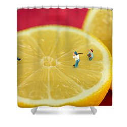 Playing Baseball On Lemon Shower Curtain