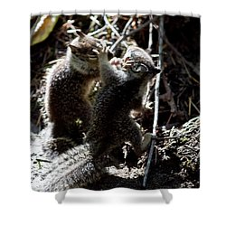 Shower Curtain featuring the photograph Playing U.f.c. by Brian Williamson
