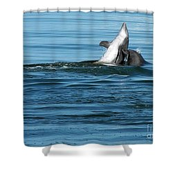 Playing With Mom Shower Curtain by Sami Martin