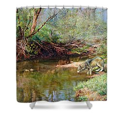 Pleasure Of  The Enchanted Wolf Shower Curtain