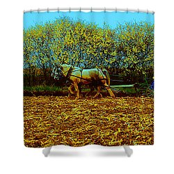 Plow Days Freeport Illinos   Shower Curtain