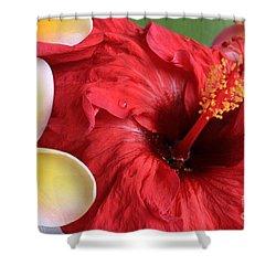 Plumeria And Hibiscus Shower Curtain