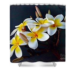 Plumeria Bouquet 2 Shower Curtain by Kaye Menner