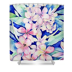 Plumerias Of Maui Shower Curtain