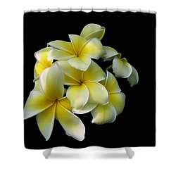 Plummer Shower Curtain by Doug Norkum