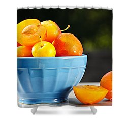 Plums In Bowl Shower Curtain by Elena Elisseeva