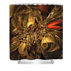 Plundered Treasure 2 Shower Curtain