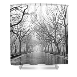 New York City - Poets Walk Central Park Shower Curtain