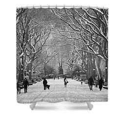New York City - Poets Walk Winter Shower Curtain