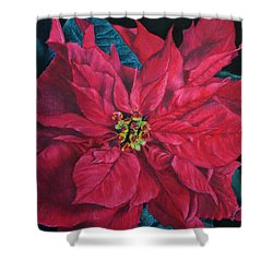 Poinsettia II Painting Shower Curtain