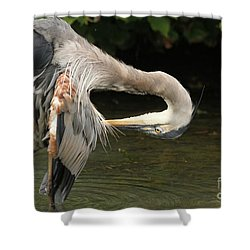 Shower Curtain featuring the photograph Point Of Interest by Heather King