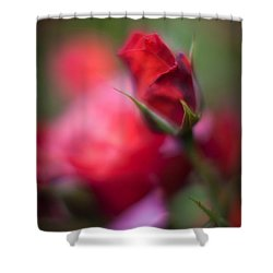 Points Shower Curtain by Mike Reid