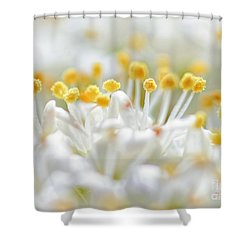 Pollen Shower Curtain