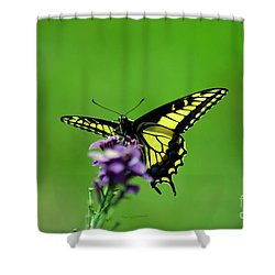 Pollinator At Work Shower Curtain