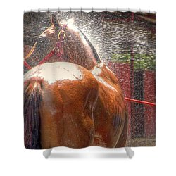 Polo Pony Shower Hdr 21061 Shower Curtain by Jerry Sodorff