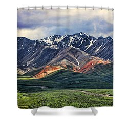 Polychrome Shower Curtain by Heather Applegate