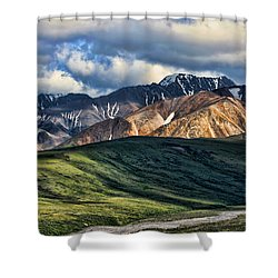 Polychrome Pass Shower Curtain by Heather Applegate