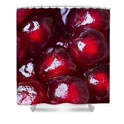 Pomegranate Closeup Shower Curtain by Alexander Senin