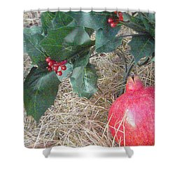 Pomegranate Love Forever Shower Curtain by Feile Case