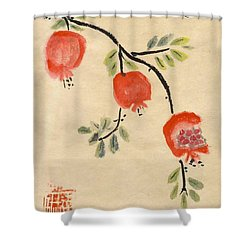 Pomegranates For Rosh Hashanah Shower Curtain