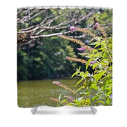 Pond At Norfolk Botanical Garden 12 Shower Curtain by Lanjee Chee