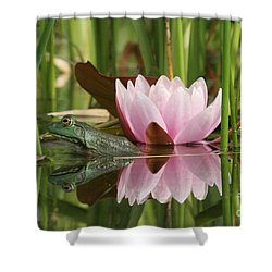 Pond Reflections Shower Curtain by Judy Whitton