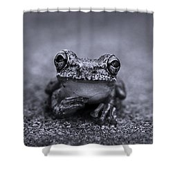 Pondering Frog Bw Shower Curtain