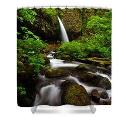 Ponytail Dreams Shower Curtain by Darren  White