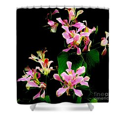 Poor Mans Orchid Shower Curtain