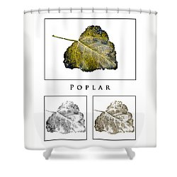 Shower Curtain featuring the photograph Poplar Leaf 3x White by Greg Jackson