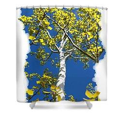 Poplar Tree In Spring  Shower Curtain by Will Borden