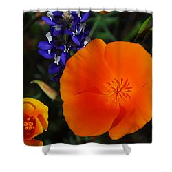Poppies And Lupine Shower Curtain by Lynn Bauer