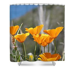 Shower Curtain featuring the photograph Poppies by Bev Conover
