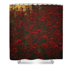 Poppies In The Rain Shower Curtain