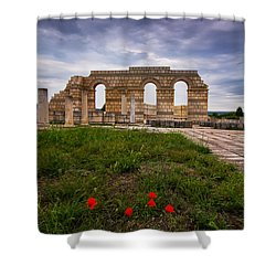 Poppies In The Ruins Shower Curtain by Eti Reid