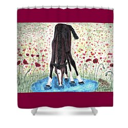 Poppies N  Puddles Shower Curtain by Angela Davies