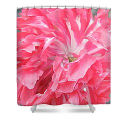 Popping Pink Shower Curtain by Brian Boyle