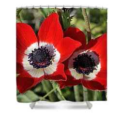 Poppy Anemones Shower Curtain by George Atsametakis