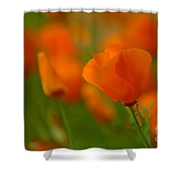 Shower Curtain featuring the photograph Poppy Art by Nick  Boren