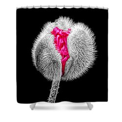 Poppy Emerging Shower Curtain