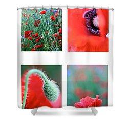 Poppy Field 1 Shower Curtain by AR Annahita
