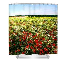 Poppy Field In Summer Shower Curtain by Craig B