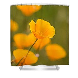 Poppy I Shower Curtain