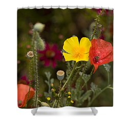 Shower Curtain featuring the photograph Poppy Love by Mark Greenberg